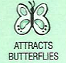 attracts butterflies